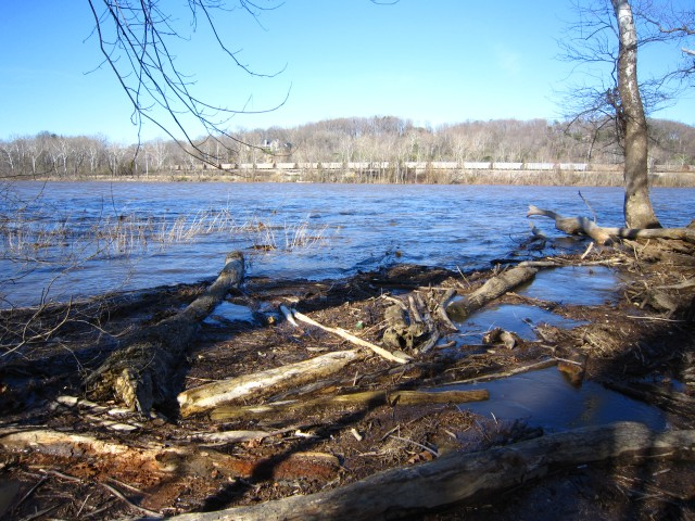 The river is rising, Mar. 5, 2011