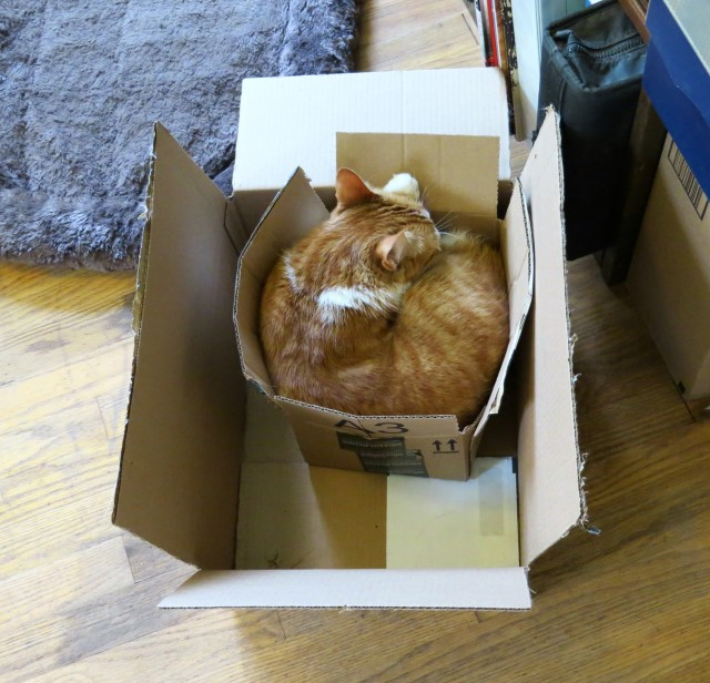 Two boxes are better than one