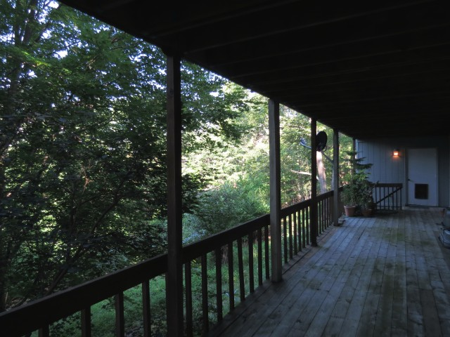 """The view off """"our"""" porch - a lot like the view of the porch of the cabin."""