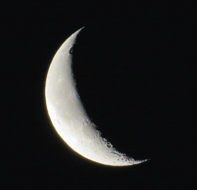 Waning moon, 25 days old, 24% illuminated