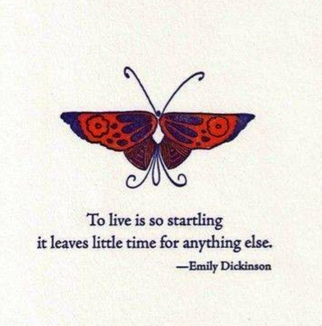 To live is so startling  it leaves little time for anything else - Emily Dickinson