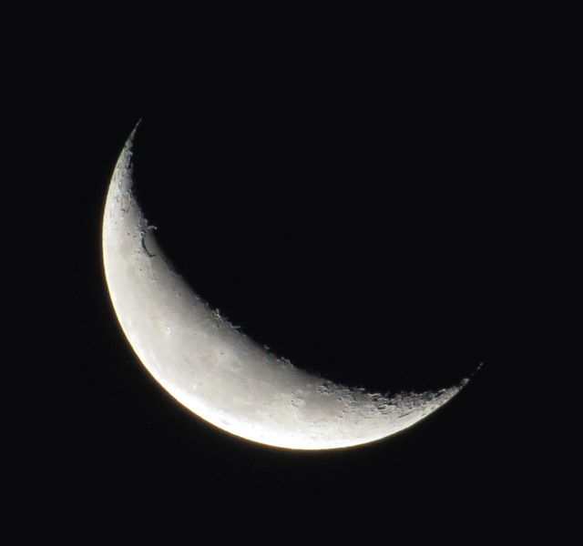 Waning crescent moon, about 24.5 days old: