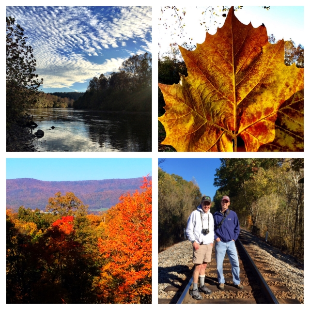 Clockwise from top left: The South Fork of the Shenandoah River w/amazing sky, a sycamore leaf, Shane and me hanging out where we used to hang out, autumn colors in the Shenandoah Valley from our deck. Thanks Ev!