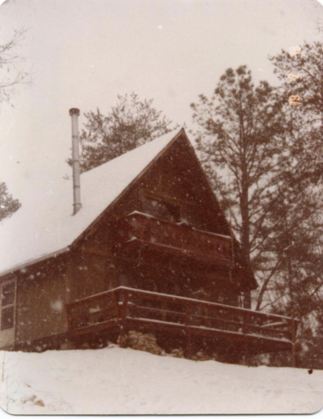 The cabin in a light snow. See the chimney for the stove? And the front deck?