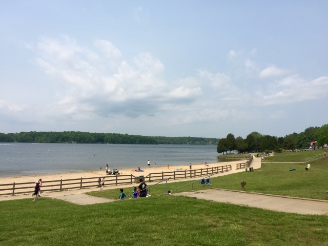 Beach at Lake Anna State Park. Fantastic swimming.