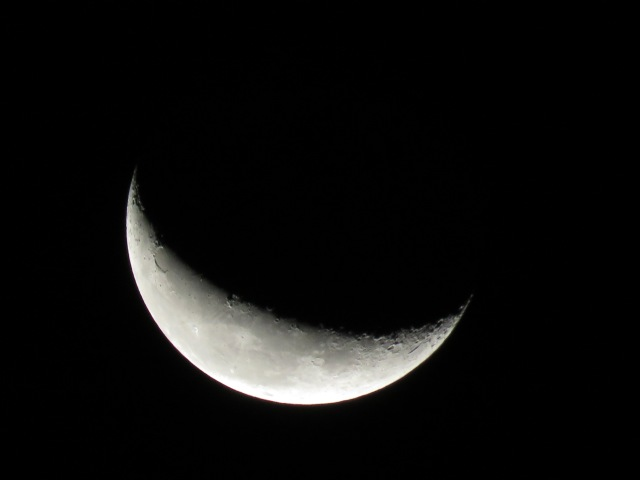 Waning crescent moon from early Tuesday morning: