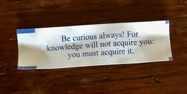 Be curious always! For knowledge will not acquire you: you must acquire it.