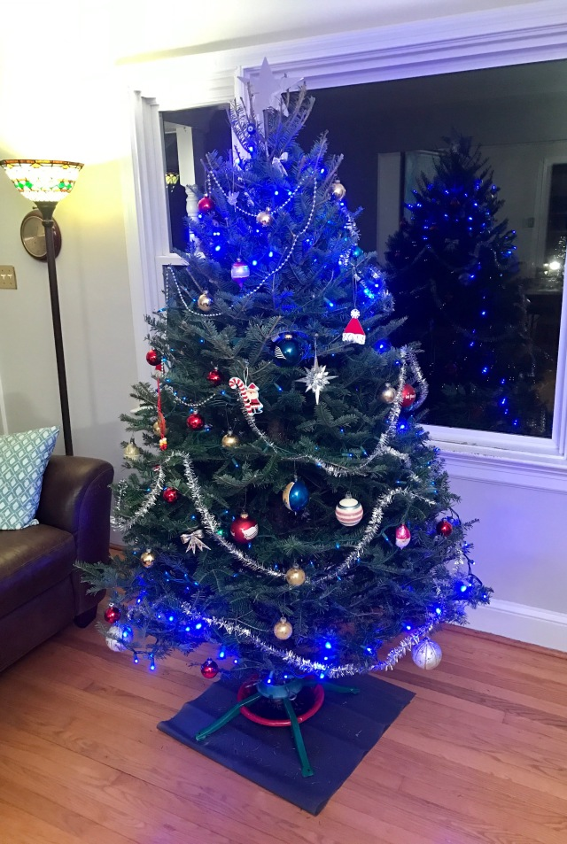 Our Christmas tree. We put candy canes on after I took this picture.